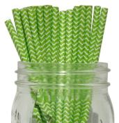 Chevron Stripe Paper Straw 25pcs Kiwi