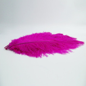 10pcs Ostrich Feather Rose-red 25cm - 30cm Natural Feathers Wedding, Party ,Home ,Hairs Decoration