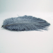 10pcs Ostrich Feather Grey 25cm - 30cm Natural Feathers Wedding, Party ,Home ,Hairs Decoration