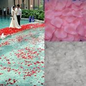 2013newestseller New Romantic White Pink Per 1000pcs Fabric Silk Rose Petals Wedding Party Confetti Artificial Flora Petals(2000pcs?