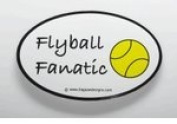 Flyball Fanatic Sticker