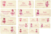Melissa Frances 16-Pack C'est La Vie Flash Cards, 3.2cm by 6.4cm