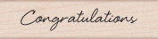 Hero Arts Woodblock Stamp, Little Greetings Congratulations