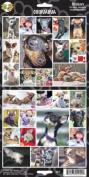 Pet Qwerks S12 Chihuahua Dog Sticker
