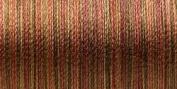 Sulky Blendable Thread 12 Wt King Size 330 Yards Caramel Apple