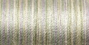 Sulky Blendable Thread 12 Wt King Size 330 Yards Natural Taupe