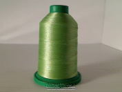 Isacord Thread 5000M colour 5822
