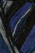 Austerman Step Sock Yarn 0024