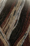 Austerman Step Sock Yarn 0023