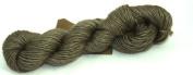 Fyberspates Scrumptious Silk/Merino Wool DK/Worsted Biscuit (Brown) Yarn