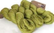 Fyberspates Scrumptious Silk/Merino Wool Aran Moss Yarn