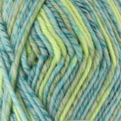 5 Skeins - Chunky Melody 70% Wool Blend Yarn, Bulky, 100g/skein style B945 by BambooMN