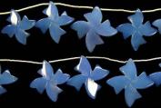 Blue Chalcedony Flowers -