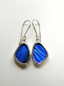 Blue Morpho Butterfly Wing Tiny Earrings