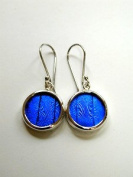 Blue Morpho Butterfly Wing Tiny Round Earrings