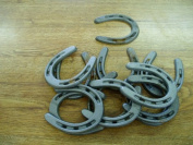 20 pc Cast Iron Horseshoes for Decorating and Crafts