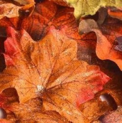 Autumn Splendour Artificial Maple Leaves Accented with Copper Glitter for Fall Decorating