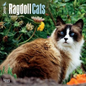 Ragdoll Cats 2015 Wall