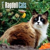 Ragdoll Cats 2015 Wall
