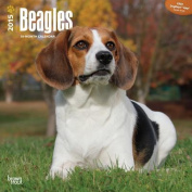 Beagles 2015 Wall