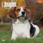 Beagles 2015 Wall