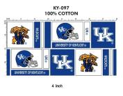 University of Kentucky Fine Cotton Geometric Herringbone Design