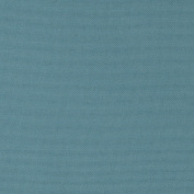 Swavelle/Mill Creek Indoor/Outdoor Fresco Solid Carribean Fabric