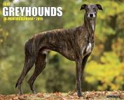 Just Greyhounds 18-Month Calendar
