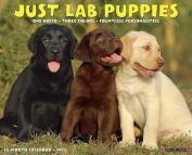 Just Lab Puppies 18-Month Calendar