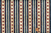 Northcott 'Stars and Stripes II' Stonehenge Quilt of Valour Repeating Stripes on Cotton Fabric - 80cm