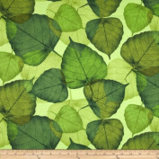 Flora Large Leaf Green Fabric