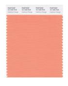 PANTONE SMART 15-1340X Colour Swatch Card, Cadmium Orange