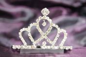 Beautiful Bridal Wedding Tiara Crown With Leaf Crystal DH14857
