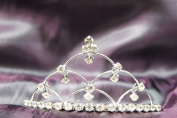 Princess Bridal Wedding Tiara Crown with 6 Crystal Leaf DH14833
