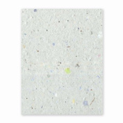 Grow-a-Note Plantable Seed Paper, 10 sheets, 20cm - 1.3cm x 28cm , Confetti