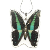 HD06 REAL Butterfly Necklace
