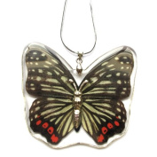 HD02 Butterfly Necklace