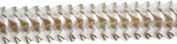 Pleated Trim Ruffeled Pleated Grosgrain Ribbon Roll, Cream, 25-Yard