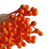 Lot of 100 Orange Tangerine Double Side Pearl Flower Stamens