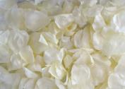 Ivory Rose Petals Table Decoration 1200 PCS
