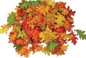 Assorted Mini Fall Colour Oak Leaves - Autumn Weddings, Flowergirl Leaves, Fall Decor