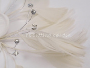 "Ivory Feather and Crystal Accent ""Tweetie"""