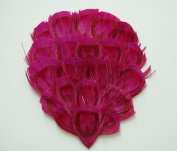 1 Bleached Peacock Feather Pad - HOT PINK