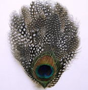 6 Pcs Guinea Feather Pads - NATURAL (Black & White) w/ Peacock EYE