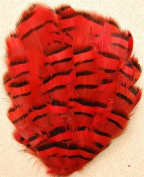 6 Pcs Grouse Pheasant Feather Pads - RED