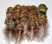 100 Pcs Peacock Plumage Feathers - Green/Gold