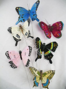 Assorted Natural Look Butterflies 11cm Hand Painted Feathers Per 1 Dozen
