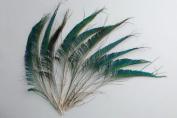 50 Pcs Peacock Swords Natural Feathers 25cm - 36cm