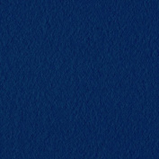 Wintry Fleece Navy Blue Fabric