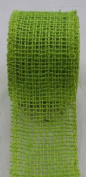 Apple Green 3.8cm x 10 Yard Jute